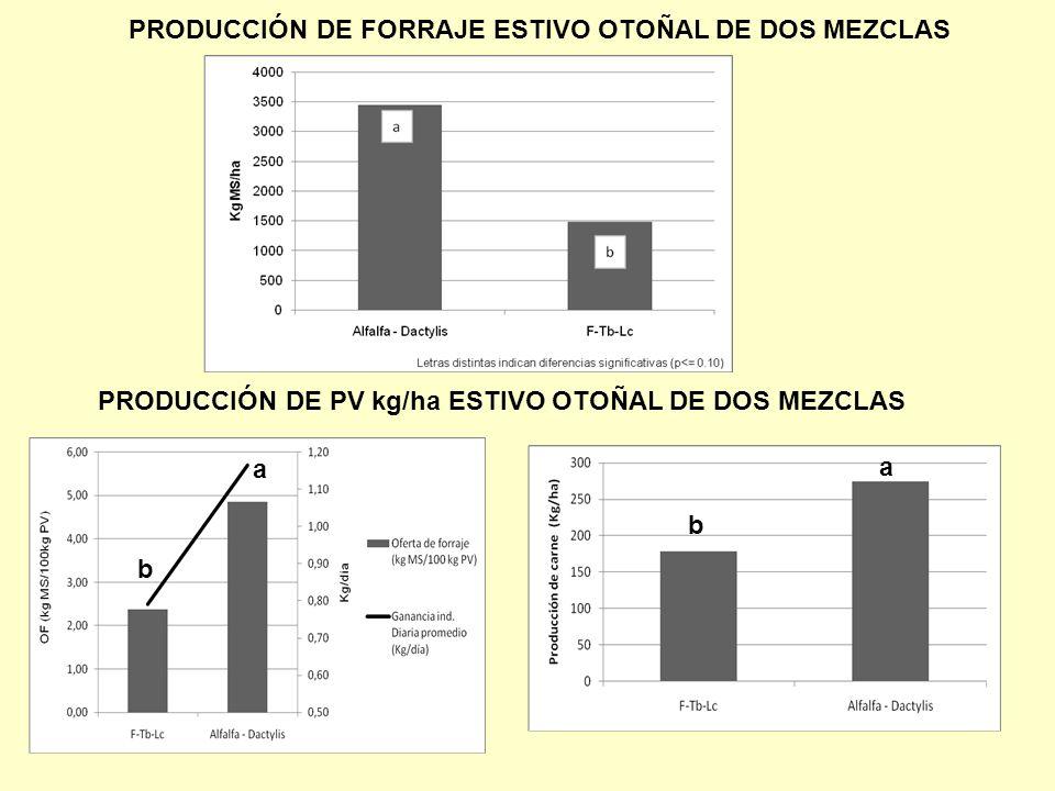 PRODUCCIÓN DE FORRAJE ESTIVO OTOÑAL DE DOS MEZCLAS PRODUCCIÓN DE PV kg/ha ESTIVO OTOÑAL DE DOS MEZCLAS b b a a