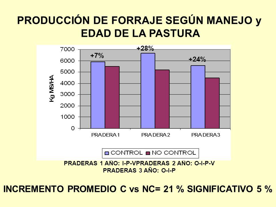 PRADERAS 1 AÑO: I-P-VPRADERAS 2 AÑO: O-I-P-V PRADERAS 3 AÑO: O-I-P PRODUCCIÓN DE FORRAJE SEGÚN MANEJO y EDAD DE LA PASTURA +7% +28% +24% INCREMENTO PROMEDIO C vs NC= 21 % SIGNIFICATIVO 5 %