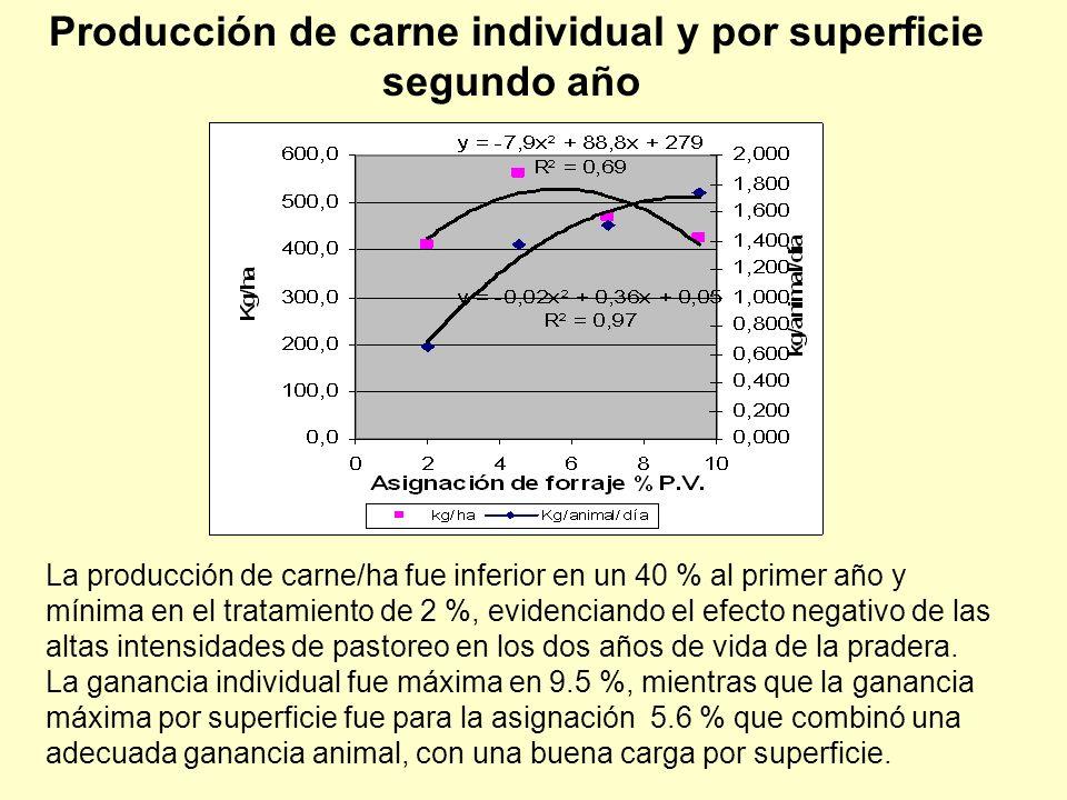 La producción de carne/ha fue inferior en un 40 % al primer año y mínima en el tratamiento de 2 %, evidenciando el efecto negativo de las altas intens