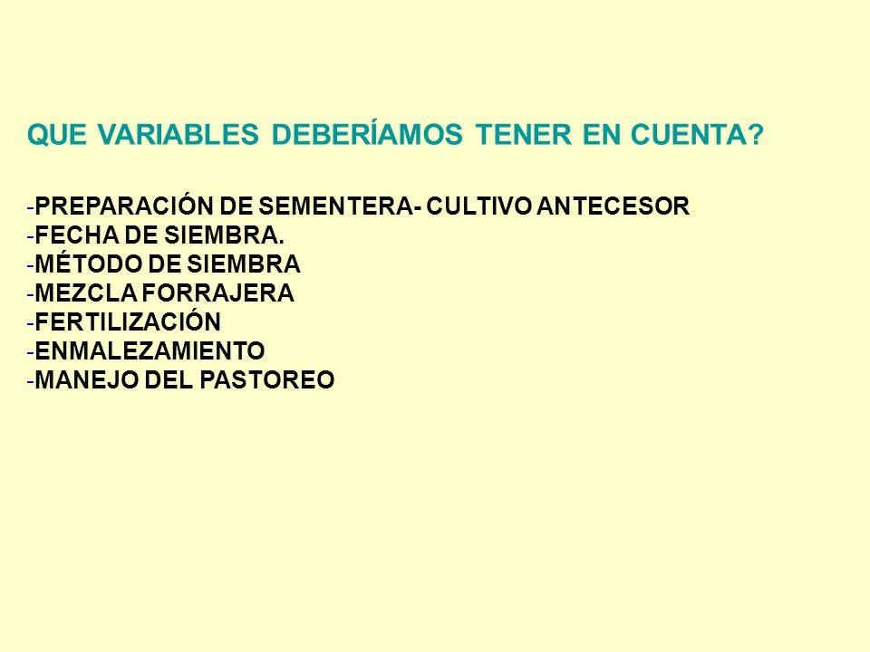 QUE VARIABLES DEBERÍAMOS TENER EN CUENTA? -PREPARACIÓN DE SEMENTERA- CULTIVO ANTECESOR -FECHA DE SIEMBRA. -MÉTODO DE SIEMBRA -MEZCLA FORRAJERA -FERTIL