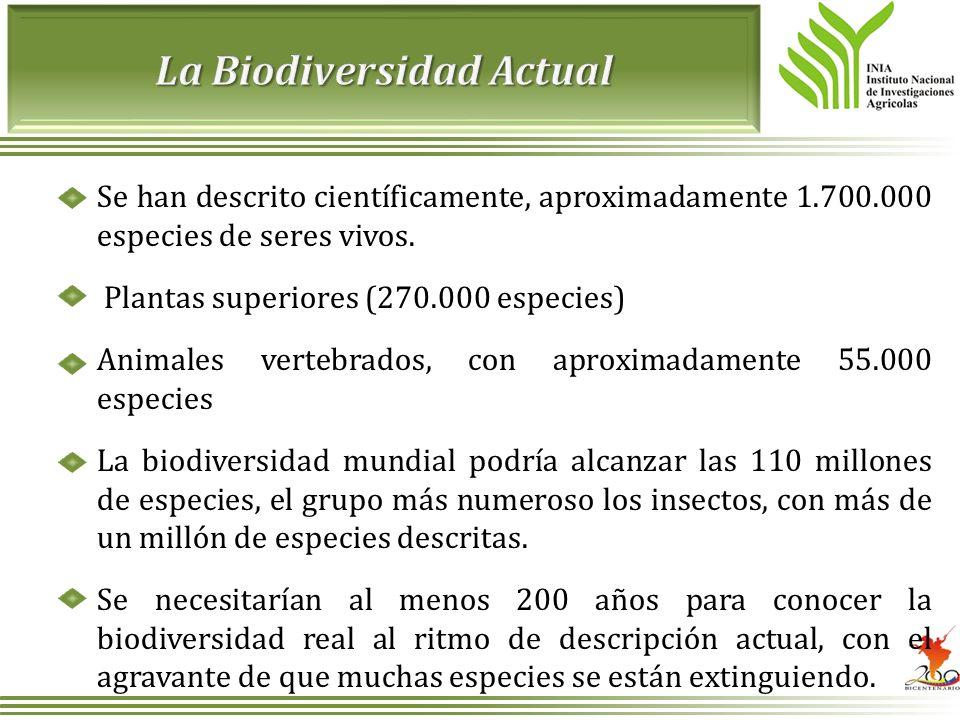 Se han descrito científicamente, aproximadamente 1.700.000 especies de seres vivos. Plantas superiores (270.000 especies) Animales vertebrados, con ap