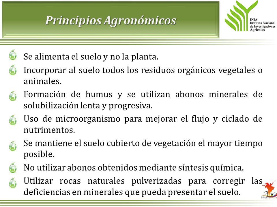 Se alimenta el suelo y no la planta. Incorporar al suelo todos los residuos orgánicos vegetales o animales. Formación de humus y se utilizan abonos mi