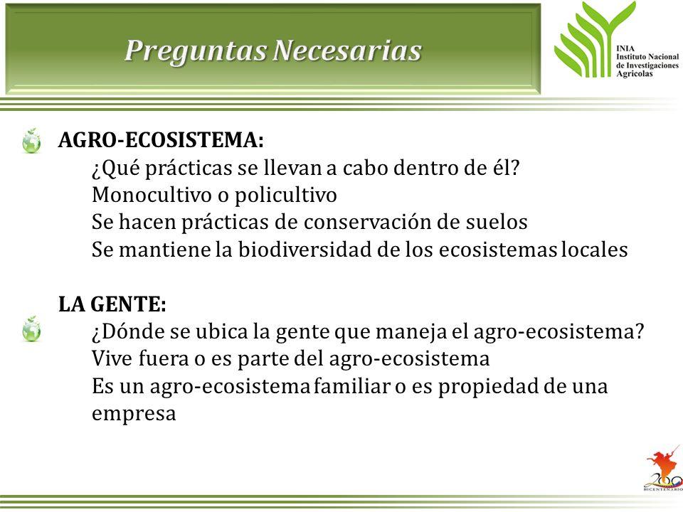 AGRO-ECOSISTEMA: ¿Qué prácticas se llevan a cabo dentro de él? Monocultivo o policultivo Se hacen prácticas de conservación de suelos Se mantiene la b