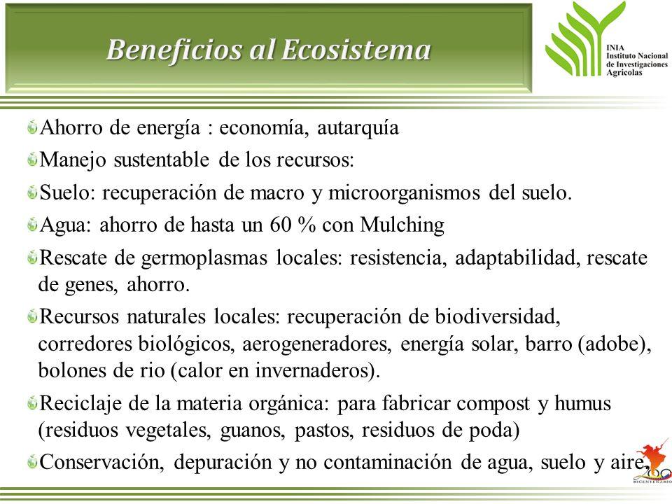 Ahorro de energía : economía, autarquía Manejo sustentable de los recursos: Suelo: recuperación de macro y microorganismos del suelo. Agua: ahorro de