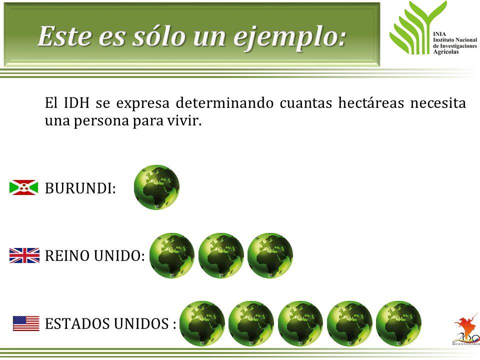 El IDH se expresa determinando cuantas hectáreas necesita una persona para vivir. BURUNDI: REINO UNIDO: ESTADOS UNIDOS :