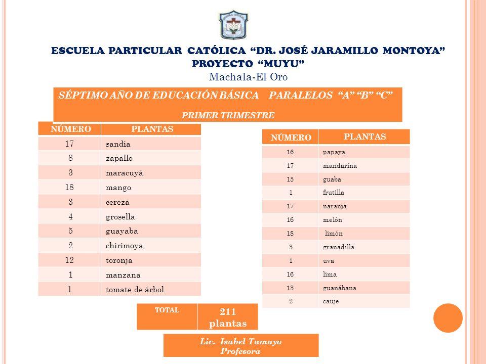 ESCUELA PARTICULAR CATÓLICA DR. JOSÉ JARAMILLO MONTOYA PROYECTO MUYU Machala-El Oro NÚMERO PLANTAS 17sandía 8zapallo 3maracuyá 18mango 3cereza 4grosel