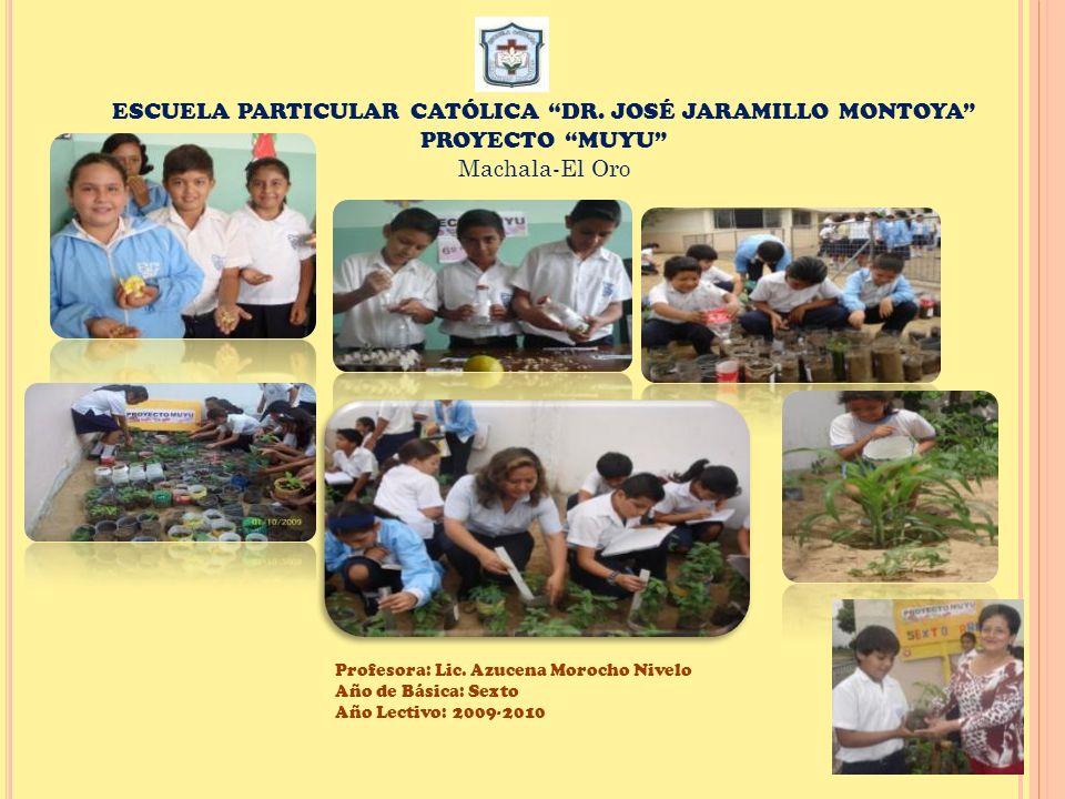 ESCUELA PARTICULAR CATÓLICA DR. JOSÉ JARAMILLO MONTOYA PROYECTO MUYU Machala-El Oro Profesora: Lic. Azucena Morocho Nivelo Año de Básica: Sexto Año Le