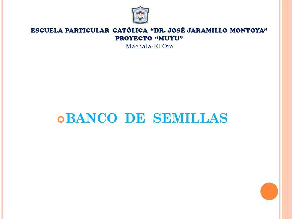 ESCUELA PARTICULAR CATÓLICA DR. JOSÉ JARAMILLO MONTOYA PROYECTO MUYU Machala-El Oro BANCO DE SEMILLAS