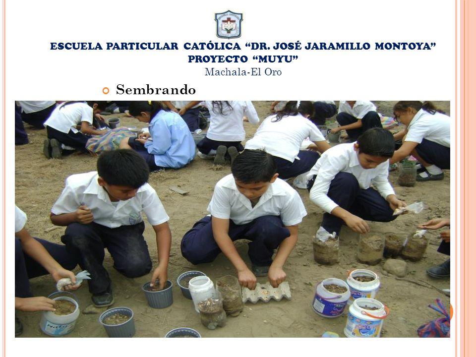 ESCUELA PARTICULAR CATÓLICA DR. JOSÉ JARAMILLO MONTOYA PROYECTO MUYU Machala-El Oro Sembrando