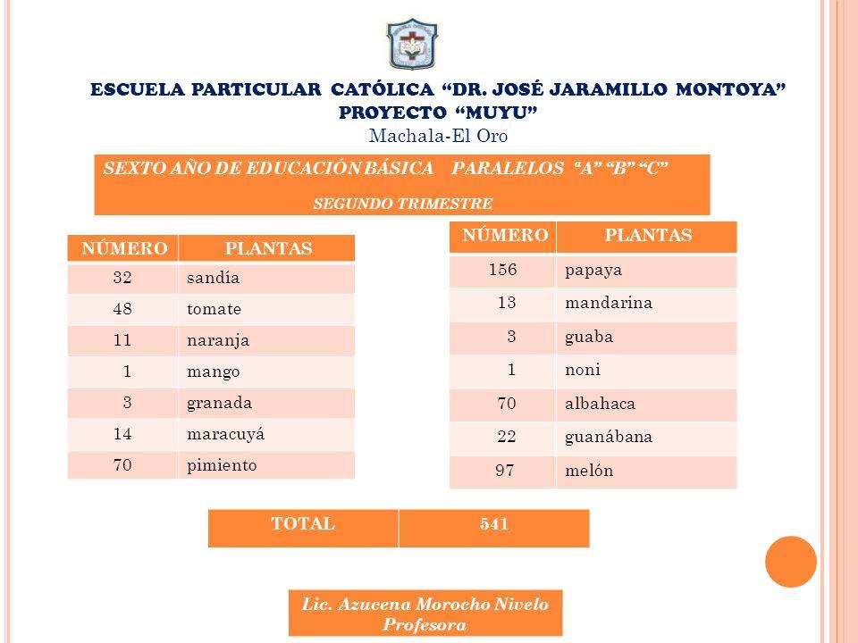 ESCUELA PARTICULAR CATÓLICA DR. JOSÉ JARAMILLO MONTOYA PROYECTO MUYU Machala-El Oro NÚMERO PLANTAS 32sandía 48tomate 11naranja 1mango 3granada 14marac