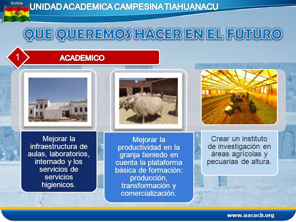 1 Mejorar la infraestructura de aulas, laboratorios, internado y los servicios de servicios higienicos. Mejorar la productividad en la granja tieniedo