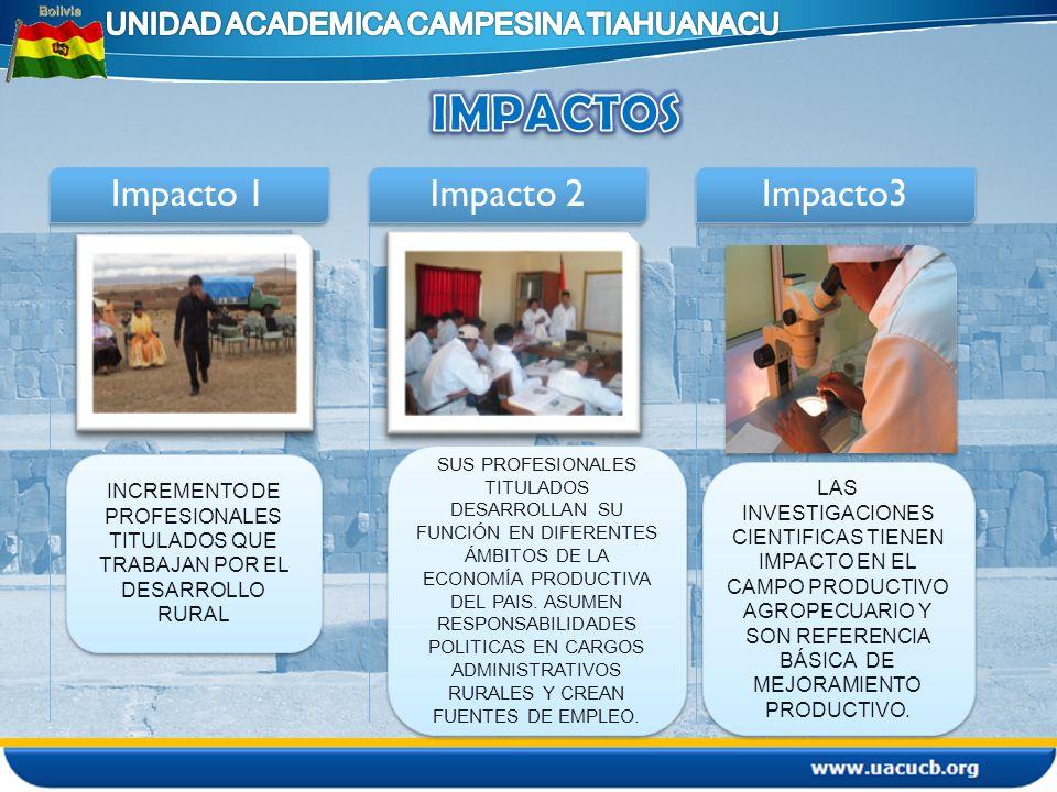 Impacto 1 statement Impacto 2 statement Impacto3 INCREMENTO DE PROFESIONALES TITULADOS QUE TRABAJAN POR EL DESARROLLO RURAL SUS PROFESIONALES TITULADO