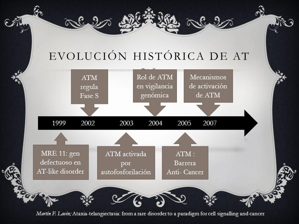ATM activada por autofosforilación Rol de ATM en vigilancia genómica Mecanismos de activación de ATM ATM : Barrera Anti- Cancer ATM regula Fase S MRE