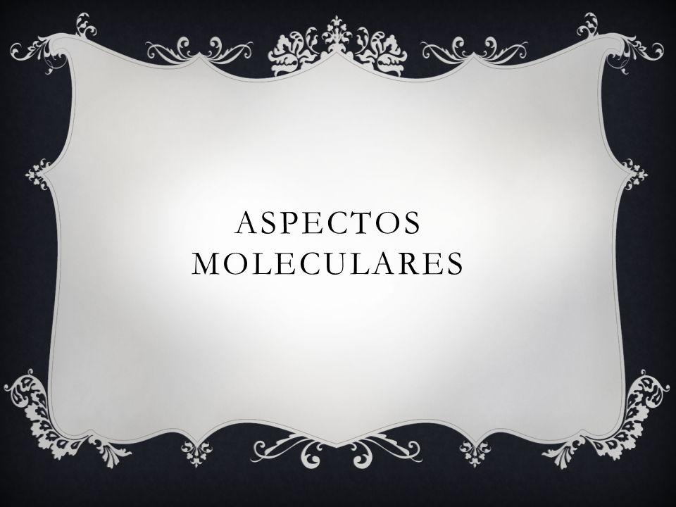 ASPECTOS MOLECULARES