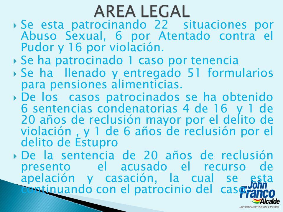 Se esta patrocinando 22 situaciones por Abuso Sexual, 6 por Atentado contra el Pudor y 16 por violación. Se ha patrocinado 1 caso por tenencia Se ha l