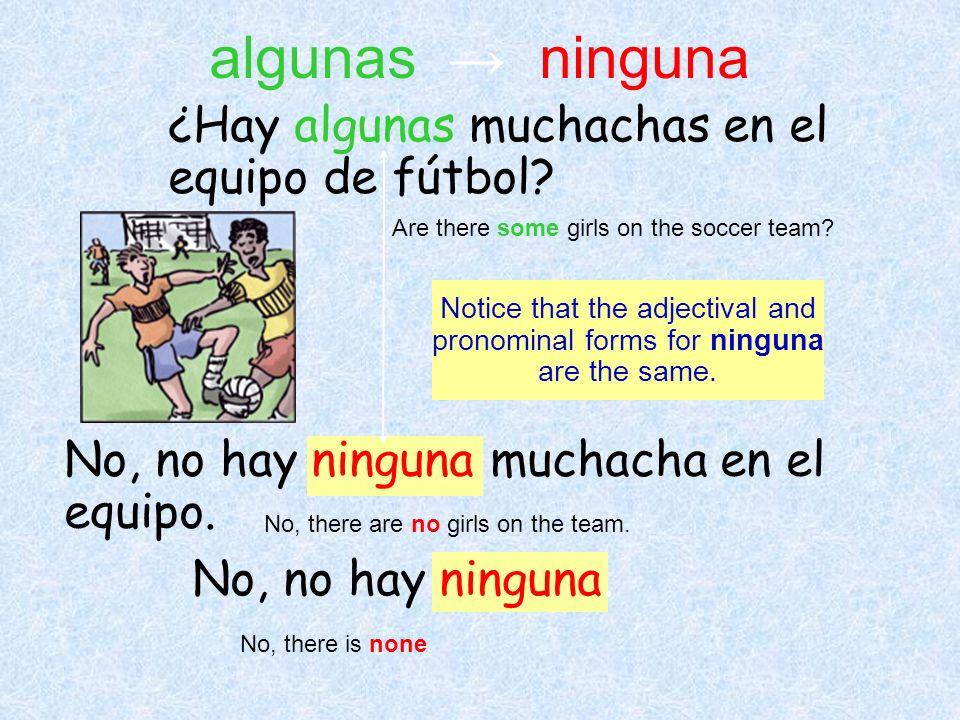 No, no hay ninguna muchacha en el equipo. No, no hay ninguna. ¿Hay algunas muchachas en el equipo de fútbol? Are there some girls on the soccer team?