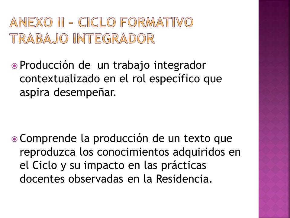 Producción de un trabajo integrador contextualizado en el rol específico que aspira desempeñar. Comprende la producción de un texto que reproduzca los