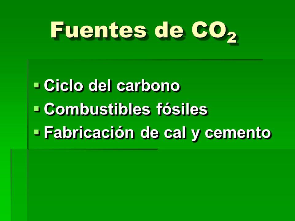 Fuentes de CO 2 Ciclo del carbono Ciclo del carbono Combustibles fósiles Combustibles fósiles Fabricación de cal y cemento Fabricación de cal y cemento Ciclo del carbono Ciclo del carbono Combustibles fósiles Combustibles fósiles Fabricación de cal y cemento Fabricación de cal y cemento