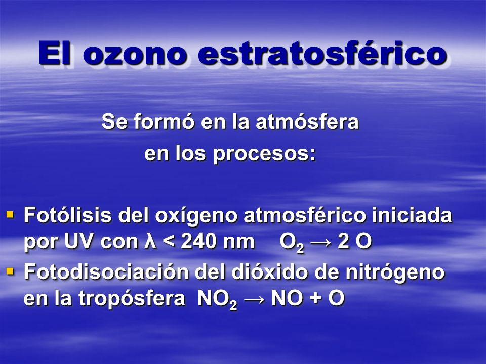 El ozono estratosférico Se formó en la atmósfera en los procesos: Fotólisis del oxígeno atmosférico iniciada por UV con λ < 240 nm O 2 2 O Fotólisis del oxígeno atmosférico iniciada por UV con λ < 240 nm O 2 2 O Fotodisociación del dióxido de nitrógeno en la tropósfera NO 2 NO + O Fotodisociación del dióxido de nitrógeno en la tropósfera NO 2 NO + O Se formó en la atmósfera en los procesos: Fotólisis del oxígeno atmosférico iniciada por UV con λ < 240 nm O 2 2 O Fotólisis del oxígeno atmosférico iniciada por UV con λ < 240 nm O 2 2 O Fotodisociación del dióxido de nitrógeno en la tropósfera NO 2 NO + O Fotodisociación del dióxido de nitrógeno en la tropósfera NO 2 NO + O