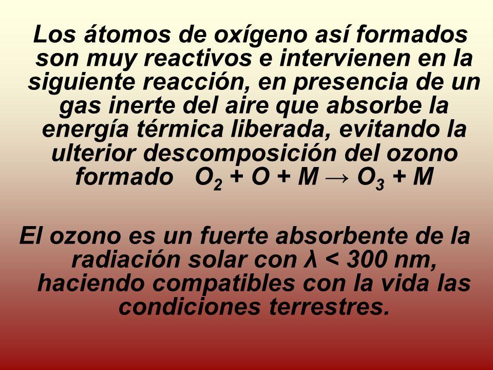 Los átomos de oxígeno así formados son muy reactivos e intervienen en la siguiente reacción, en presencia de un gas inerte del aire que absorbe la energía térmica liberada, evitando la ulterior descomposición del ozono formado O 2 + O + M O 3 + M El ozono es un fuerte absorbente de la radiación solar con λ < 300 nm, haciendo compatibles con la vida las condiciones terrestres.
