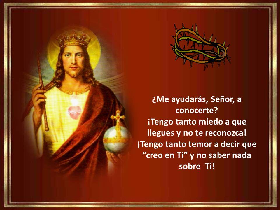 Prometo ante Ti, Jesús mi Rey, que deseo firmemente seas las ruedas de mi caminar y de mi ser. Que, frente a otros dioses que intentan colarse en mi v