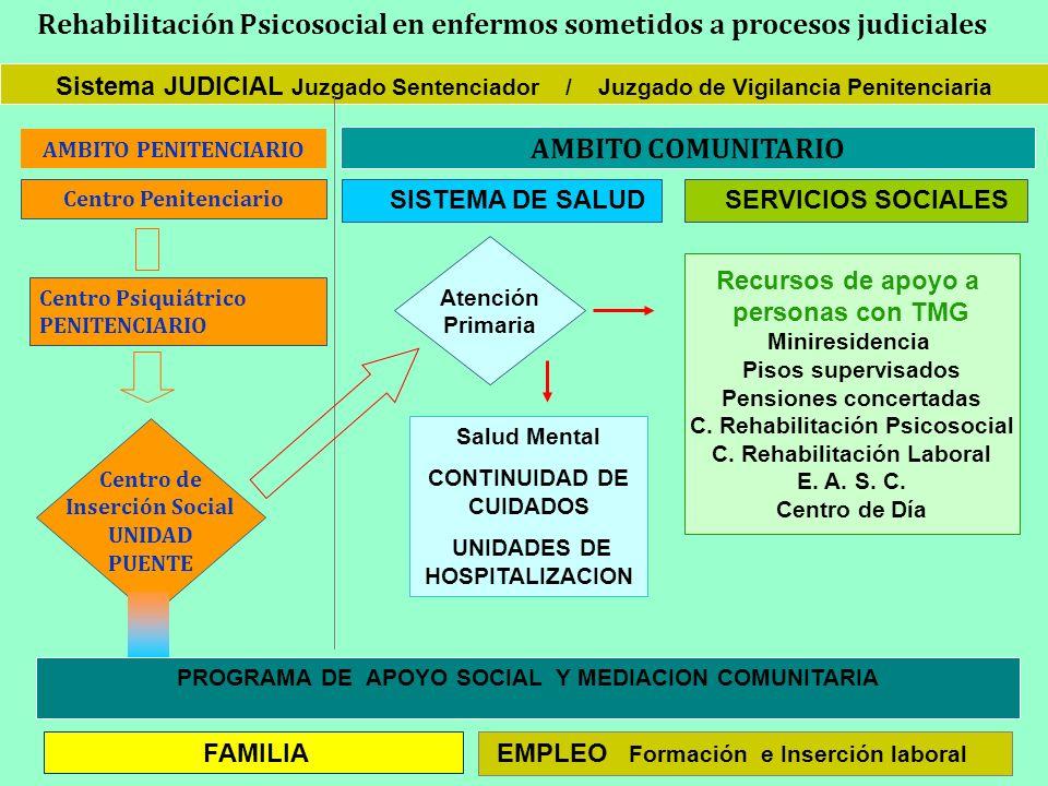 Sistema JUDICIAL Juzgado Sentenciador / Juzgado de Vigilancia Penitenciaria Centro Penitenciario Centro Psiquiátrico PENITENCIARIO AMBITO COMUNITARIO
