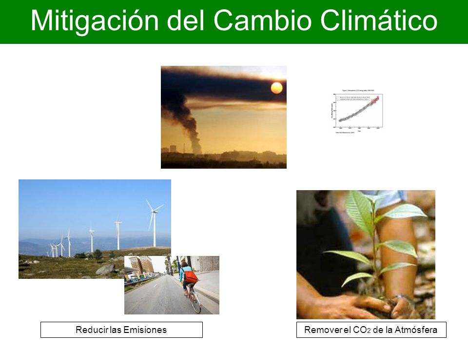 Reducir las EmisionesRemover el CO 2 de la Atmósfera Mitigación del Cambio Climático