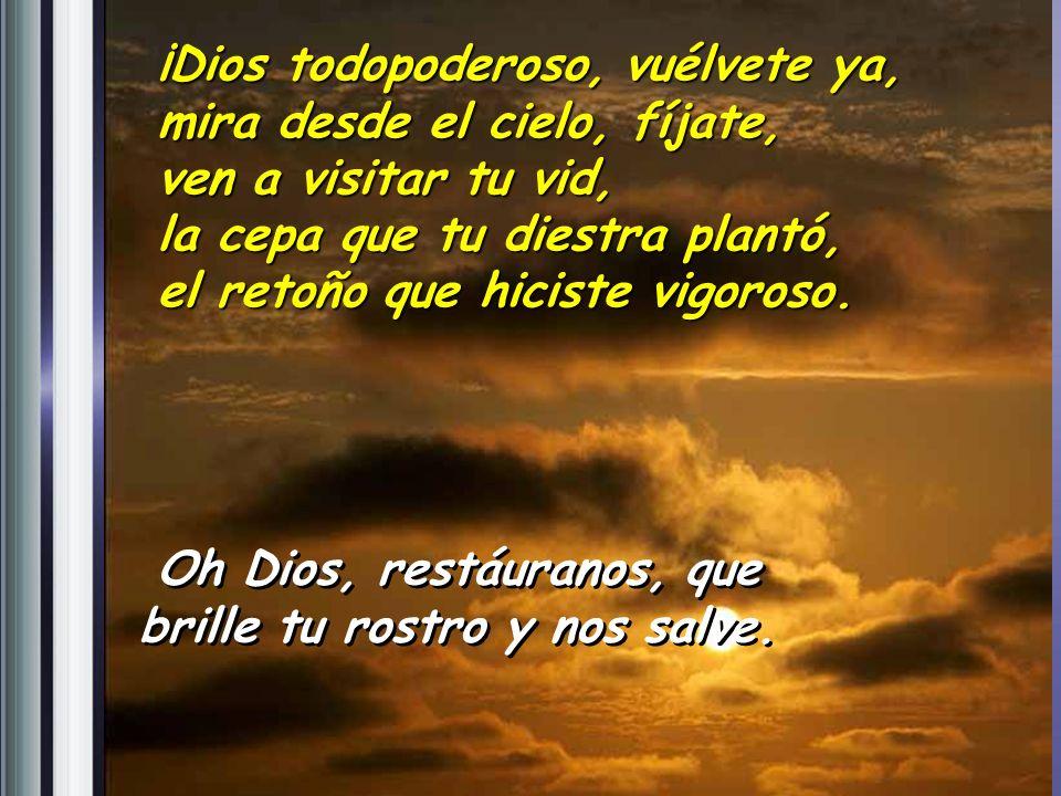 Pastor de Israel, escucha, tú que te sientas sobre querubines, resplandece; despierta tu poder y ven a salvarnos. Salmo 79