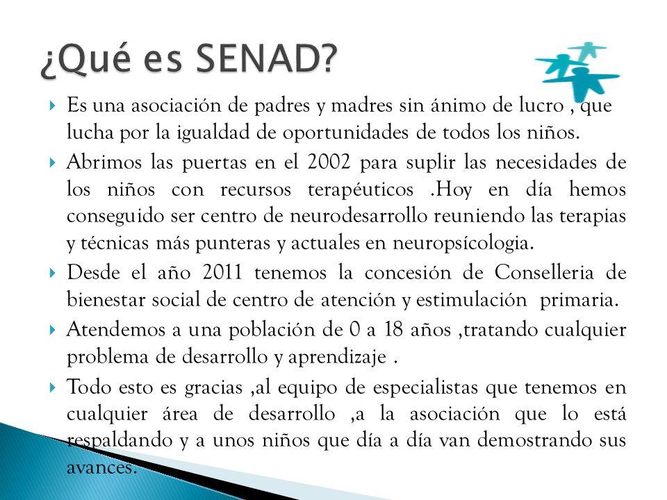SENAD es consciente de la situación en la que cada vez son mas los niños que precisan clases de apoyo o repaso.
