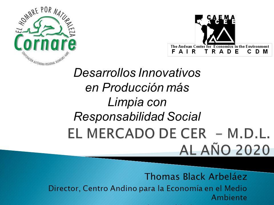Thomas Black Arbeláez Director, Centro Andino para la Economía en el Medio Ambiente Thomas.black.A@gmail.com Desarrollos Innovativos en Producción más Limpia con Responsabilidad Social