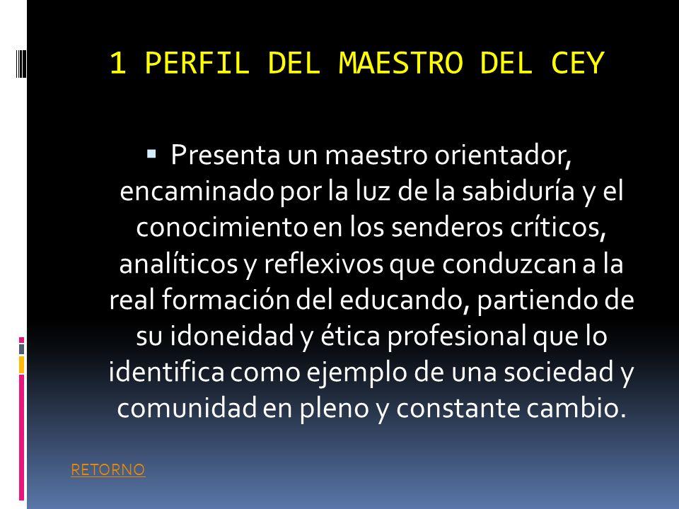 TABLA DE CONTENIDO 1.Perfil del docentedocente 1.1 Identificación Institucional.Identificación Institucional. 1.2 Organigrama Institucional.Organigram