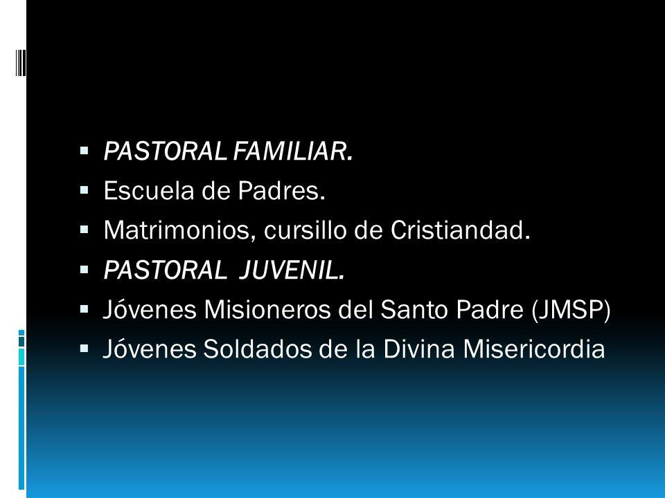 PASTORAL FAMILIAR. Escuela de Padres. Matrimonios, cursillo de Cristiandad. PASTORAL JUVENIL. Jóvenes Misioneros del Santo Padre (JMSP) Jóvenes Soldad