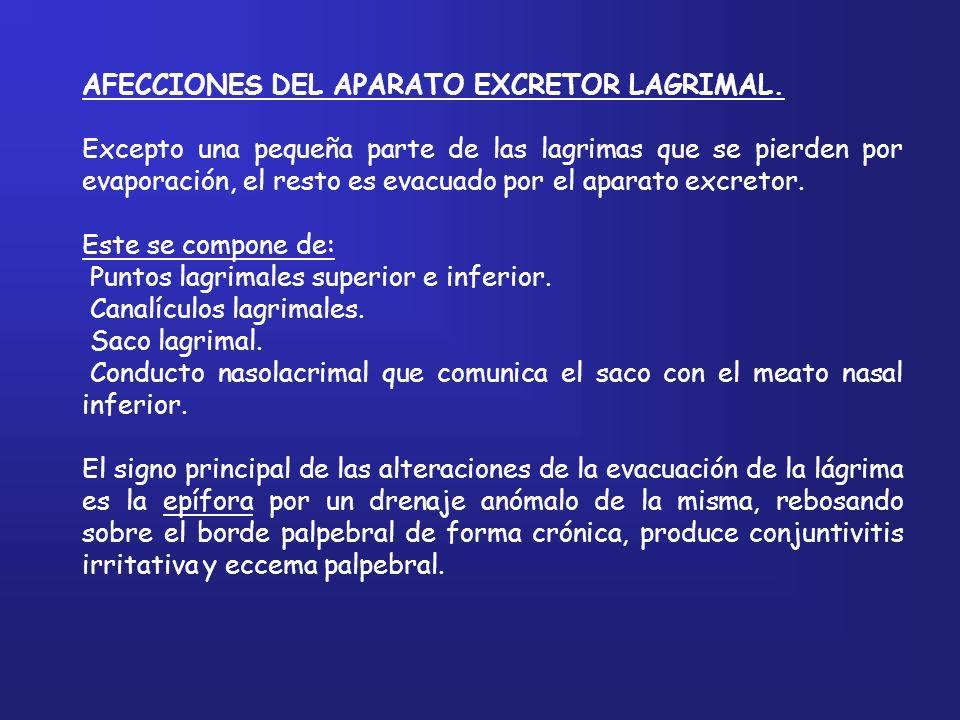 AFECCIONES DEL APARATO EXCRETOR LAGRIMAL. Excepto una pequeña parte de las lagrimas que se pierden por evaporación, el resto es evacuado por el aparat