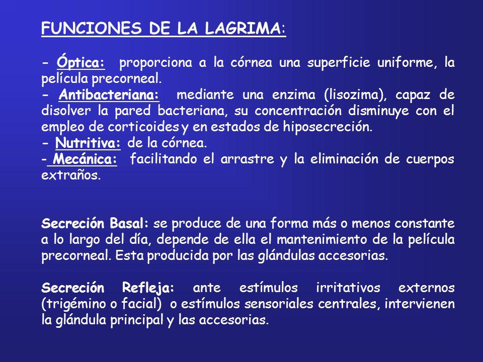 FUNCIONES DE LA LAGRIMA: - Óptica: proporciona a la córnea una superficie uniforme, la película precorneal. - Antibacteriana: mediante una enzima (lis