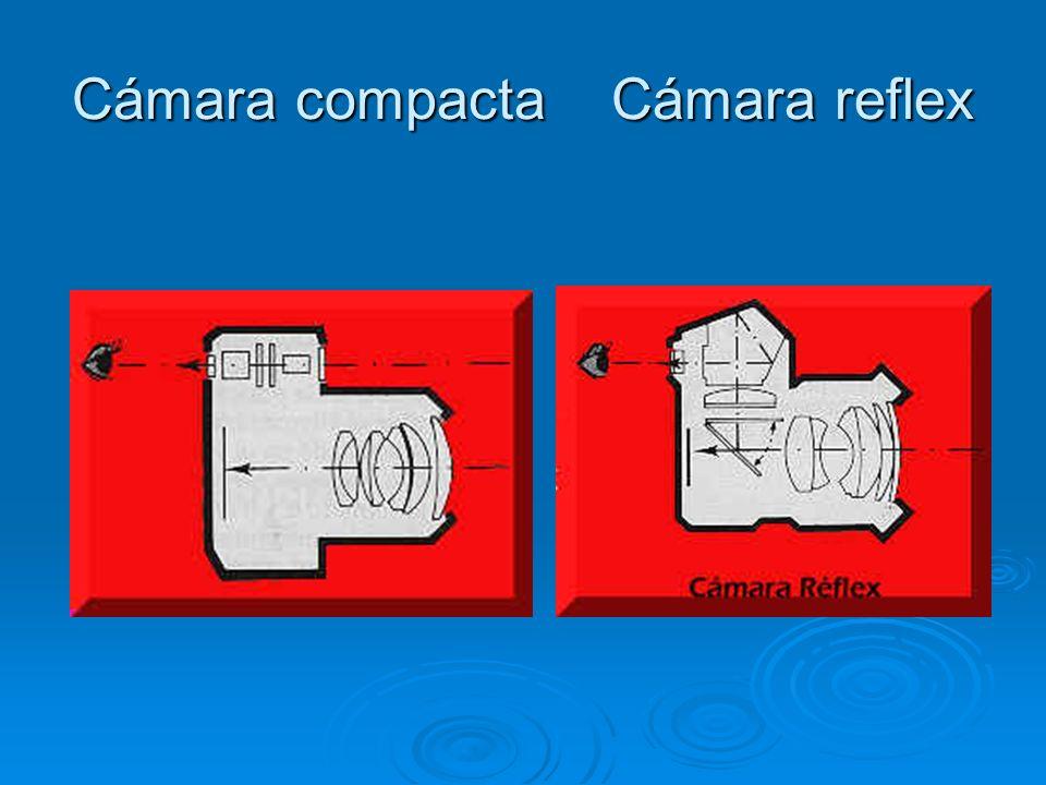 Cámara compacta Cámara reflex