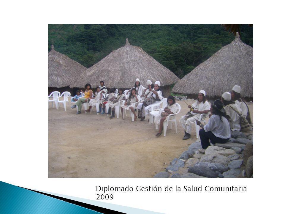 Diplomado Gestión de la Salud Comunitaria 2009
