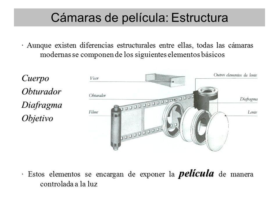 · Aunque existen diferencias estructurales entre ellas, todas las cámaras modernas se componen de los siguientes elementos básicos CuerpoObturadorDiafragmaObjetivo · Estos elementos se encargan de exponer la película de manera controlada a la luz Cámaras de película: Estructura