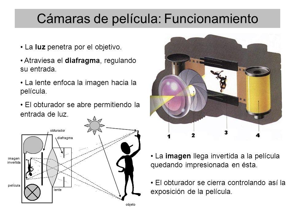 Cámaras de película: Funcionamiento La luz penetra por el objetivo.