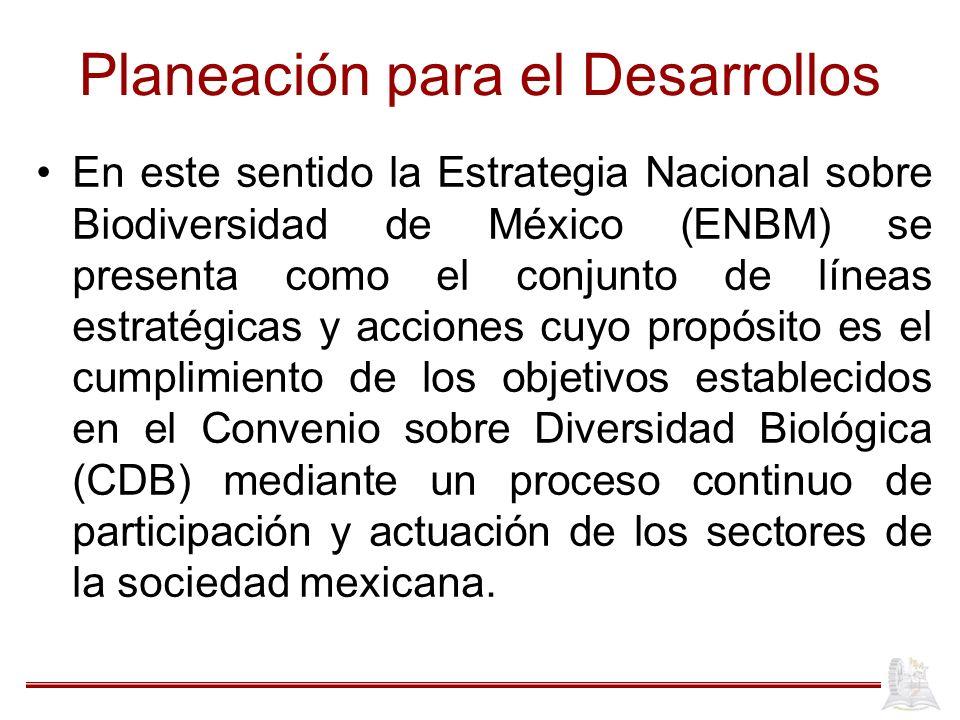 Planeación para el Desarrollos En este sentido la Estrategia Nacional sobre Biodiversidad de México (ENBM) se presenta como el conjunto de líneas estr