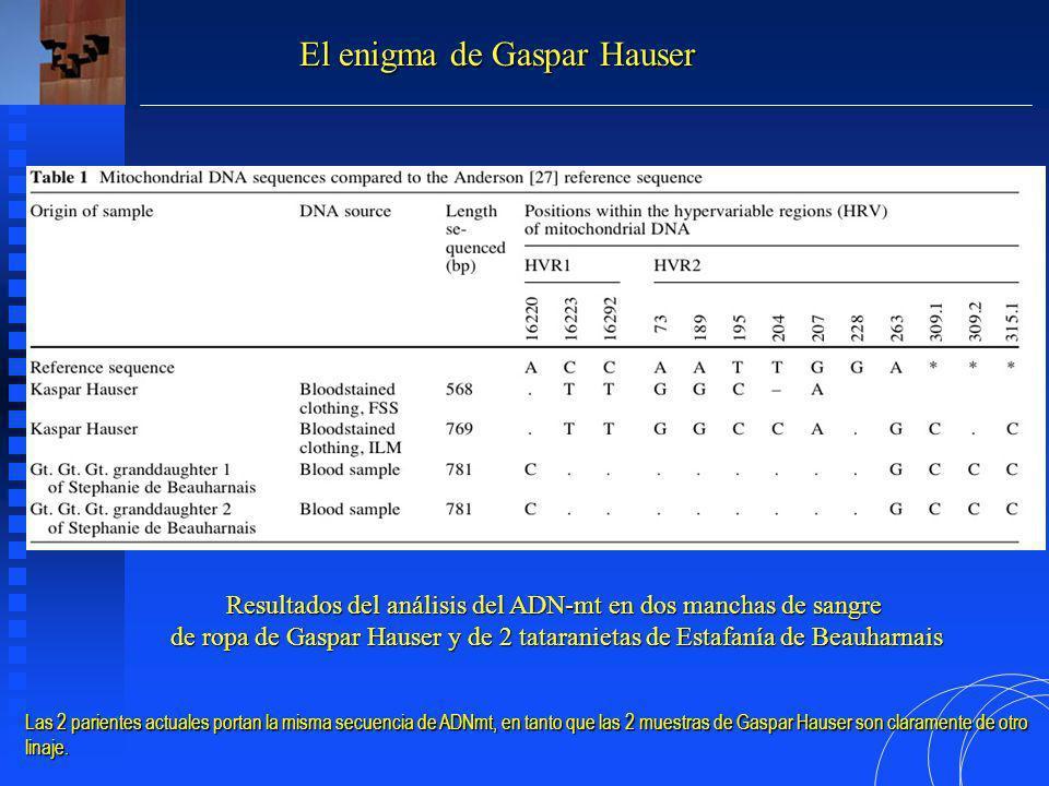 Resultados del análisis del ADN-mt en dos manchas de sangre de ropa de Gaspar Hauser y de 2 tataranietas de Estafanía de Beauharnais El enigma de Gaspar Hauser Las 2 parientes actuales portan la misma secuencia de ADNmt, en tanto que las 2 muestras de Gaspar Hauser son claramente de otro linaje.