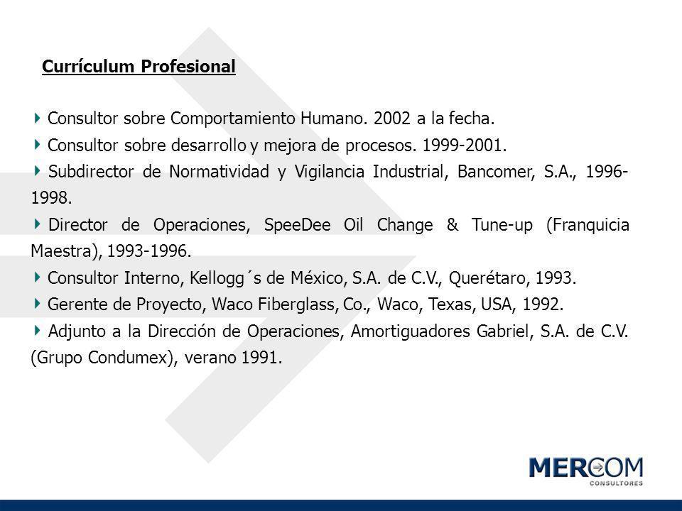 Currículum Profesional Consultor sobre Comportamiento Humano. 2002 a la fecha. Consultor sobre desarrollo y mejora de procesos. 1999-2001. Subdirector