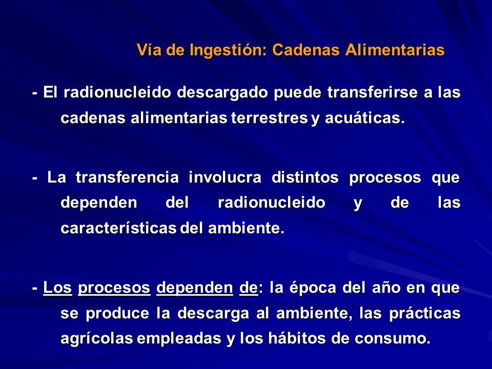- El radionucleido descargado puede transferirse a las cadenas alimentarias terrestres y acuáticas. - La transferencia involucra distintos procesos qu