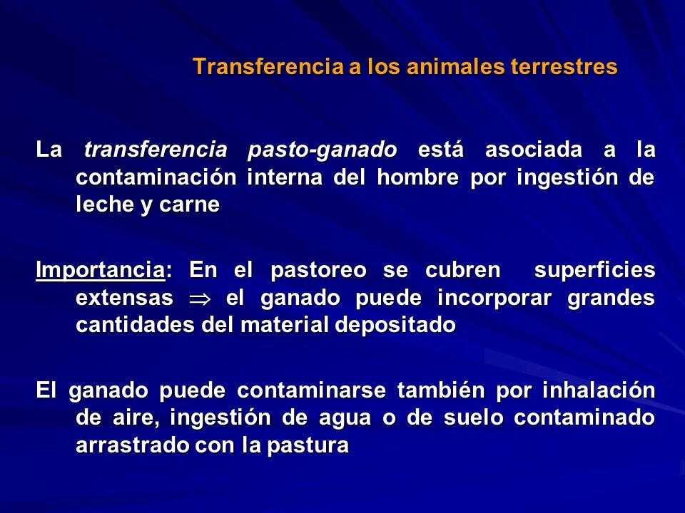 La transferencia pasto-ganado está asociada a la contaminación interna del hombre por ingestión de leche y carne Importancia: En el pastoreo se cubren