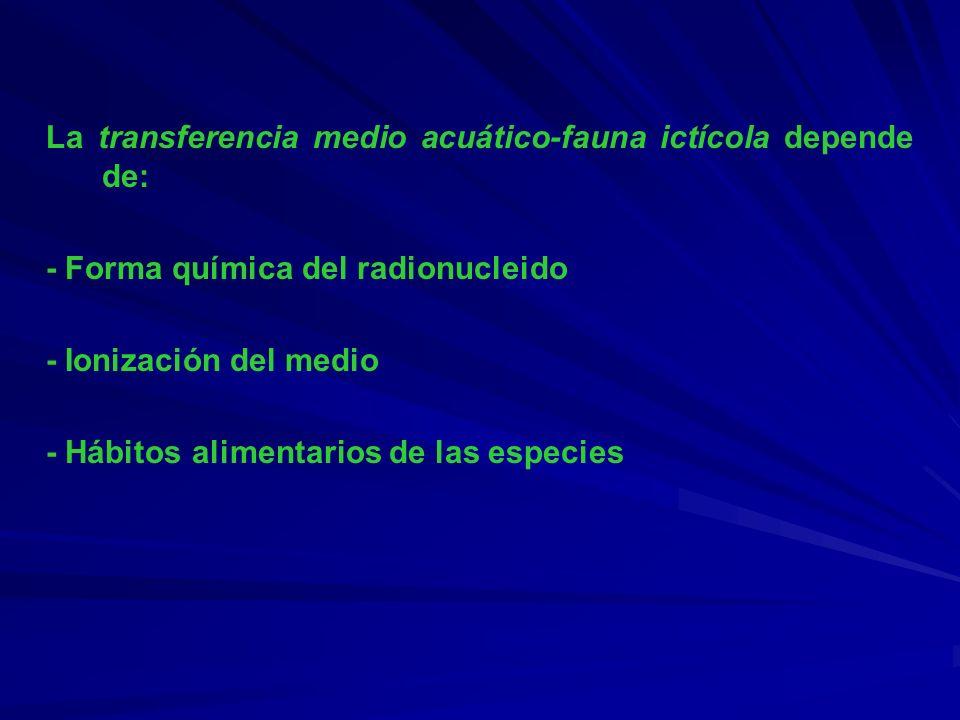 La transferencia medio acuático-fauna ictícola depende de: - Forma química del radionucleido - Ionización del medio - Hábitos alimentarios de las espe