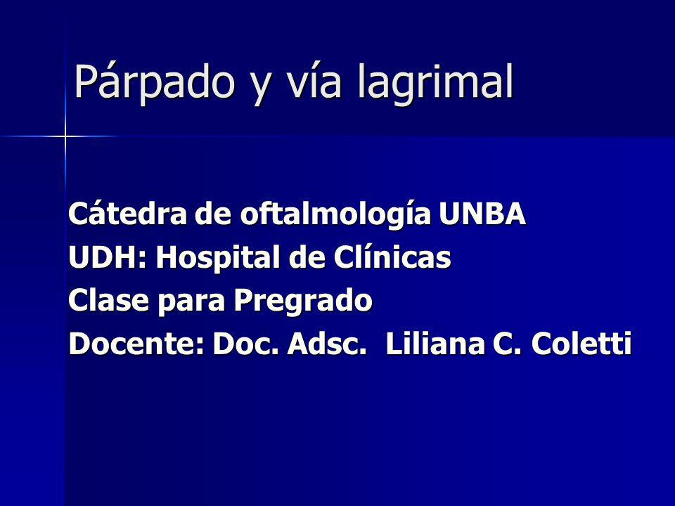 Enfermedades del borde libre Meibomitis, Orzuelo, Rosácea Enfermedades del borde libre Meibomitis, Orzuelo, Rosácea Izq.