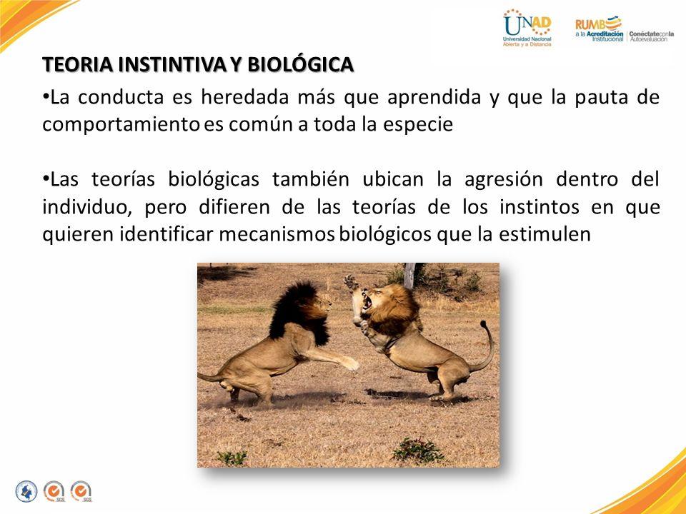La conducta es heredada más que aprendida y que la pauta de comportamiento es común a toda la especie Las teorías biológicas también ubican la agresió