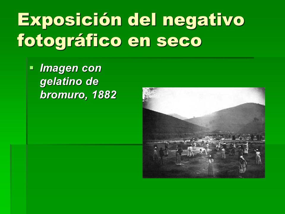Exposición del negativo fotográfico en seco Imagen con gelatino de bromuro, 1882 Imagen con gelatino de bromuro, 1882