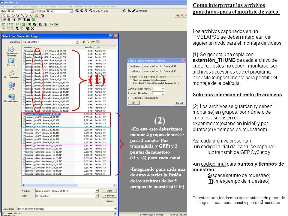 3 Como interpretar los archivos guardados tras captura Como interpretar los archivos guardados para el montaje de video.