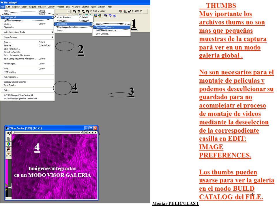 4 Montar PELICULAS 1 THUMBS THUMBS Muy iportante los archivos thums no son mas que pequeñas muestras de la captura pará ver en un modo galeria global.