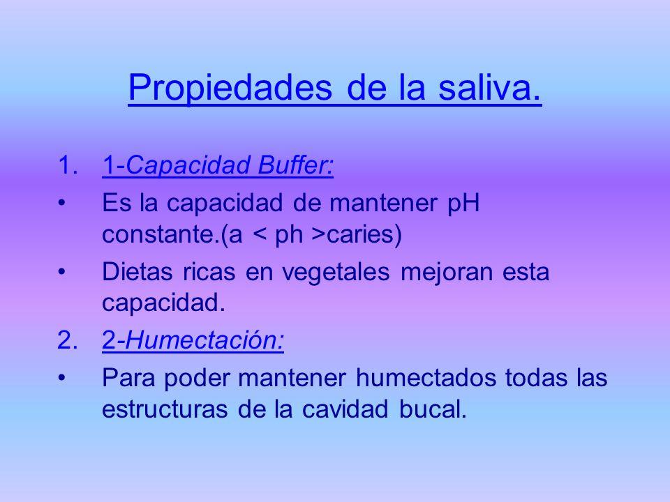 Propiedades de la saliva. 1.1-Capacidad Buffer: Es la capacidad de mantener pH constante.(a caries) Dietas ricas en vegetales mejoran esta capacidad.